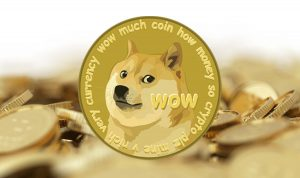 Doge-coin-smallprices24.com